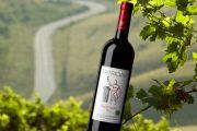 Lecţia de Pinot românesc: Patrician Pinot Noir 2011 (Crama Frâncu)